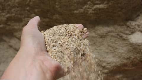 Schrot Mehl aus betriebseigenem Getreide.